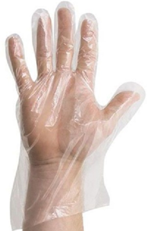 Poly Foodservice Gloves, Large  1000/Cs