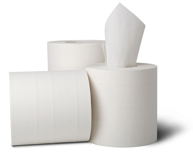 600' EcoSoft™ Center Pull Roll Towel, 2-Ply, White. 6/Cs